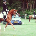 Mijn knappe pony in middendraf ♡